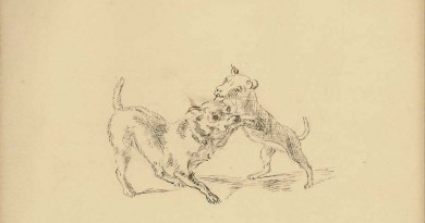 Two Dogs Playing – Count Pierre de Salis-Soglio – 1853