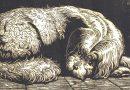 Richard Flockenhaus – Putty the Dog (Sold)