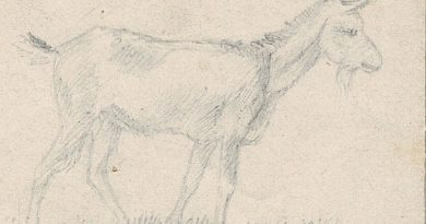 Chevrette – 19th Century Drawing of a Small Goat by Pierre de Salis
