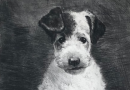 Original Vintage Artist's Engraving of a Fox Terrier Puppy