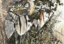 Angelfish Original Signed Artist's Engraving